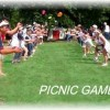 Picnic Challenges